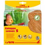 Catappa Leaves 10 ks S