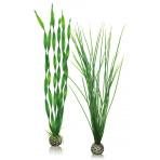 biOrb Plant Pack Set zelená 39 cm