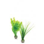 biOrb Plant Pack Set zelená 20 cm