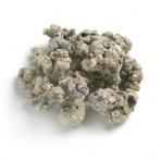 biOrb Filtračné keramické média 450 g