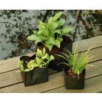 Kapsa na vodní rostliny 25x25x20 cm