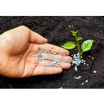 Hnojivo na trávník