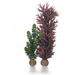 biOrb seapearls & kelp olive green