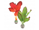 Rostlinky biOrb