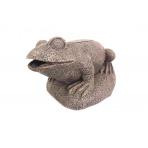 Frog filtr