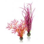 biOrb Rostlinkový Set rudá a růžová 20 a 29 cm