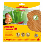 Catappa Leaves 10 ks M