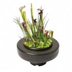 Plovoucí košík na rostliny Ø 22 cm